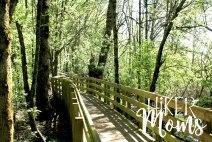 Rail Trail Ankeny Wildlife Refuge South Salem Oregon Hiker Moms Hike Hiking Adventure 10