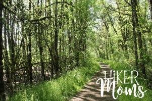 Rail Trail Ankeny Wildlife Refuge South Salem Oregon Groomed Path Easy ADA Hiker Moms Hike Hiking Adventure