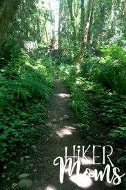 Maple Ridge Trail Estacada ORegon Milo McIver STate Park HIker Moms narrow path