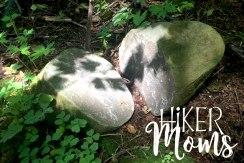 Maple Ridge Trail Estacada ORegon Milo McIver STate Park HIker Moms 3