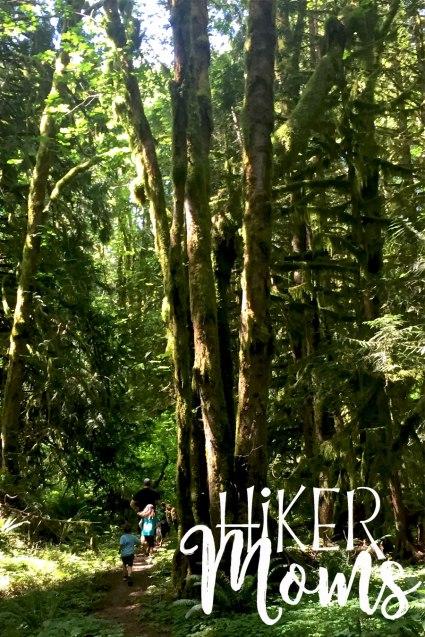 Maple Ridge Trail Estacada ORegon Milo McIver STate Park HIker Moms tall trees