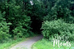 Virginia Lake Sauvie Island Portland Oregon Hiker Moms Hike Oregon Hiking kids trail feature tunnel of trees