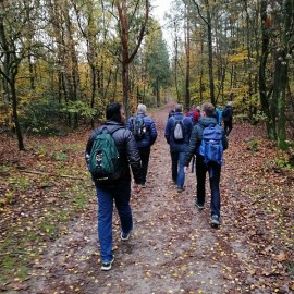 Daghike Heuvelrugroute Austerlitz, zaterdag 9 november 2019