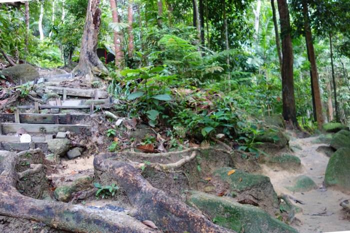 Bukit Saga - Share My Hikes