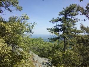 Appalachian Trail Jug End