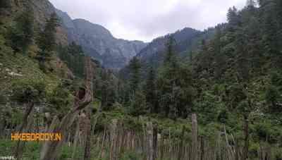 Crystal-Valley-Park-Kasol-hikesdaddy-2.jpg