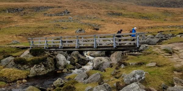 Bridge over Glenealo river