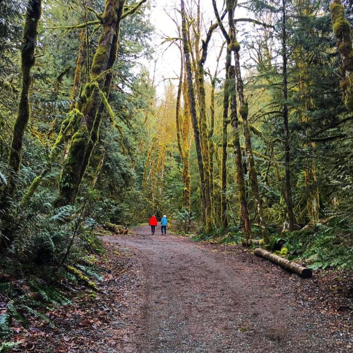 teapot hill hiking trail, cultus lake provincial park, bc parks, family friendly hiking, hikes near vancouver