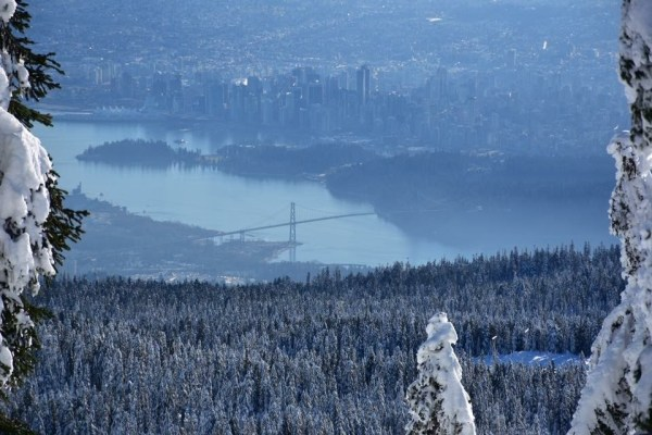 hollyburn mountain, cypress mountain, snowshoe trail, hikes near vancouver