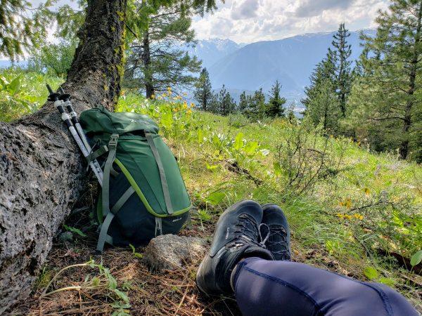 0252b039ea8 Gear Review: LOWA Lady Light GTX Ws Waterproof Hiking Boots - HIKES ...