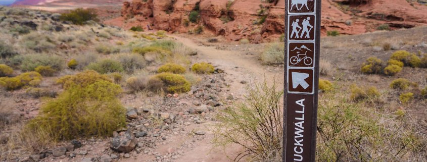Chuckwalla trail