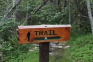 A trail marker clearly indicates the trail at a sharp turn.