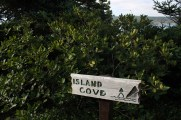 Island Cove sign from the north approach.