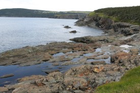 A look back at rocky Freshwater.