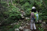 One of a couple of river crossings in the woods section of the trail. We saw a grouse at this one!