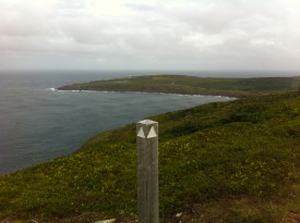 The view of Cape Spear from Blackhead.