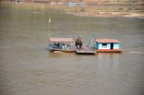 Schiffsverkehr mit Elefant
