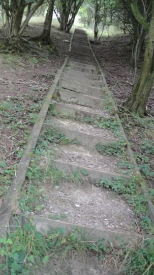 steps2015-09-08 03.32.20