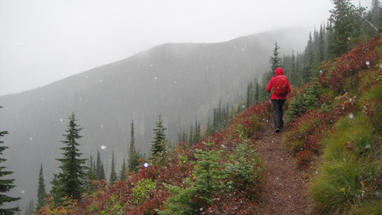 snow falling on huckleberry trail