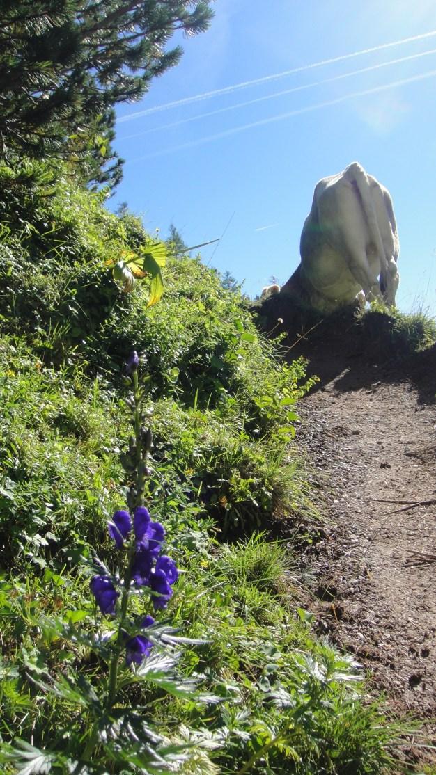 uphill-to-hut.jpg