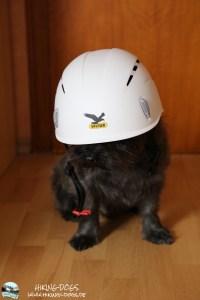 Bentley mit Helm