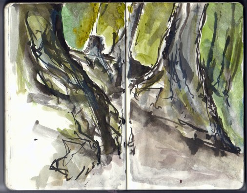 Trees ink and watercolor