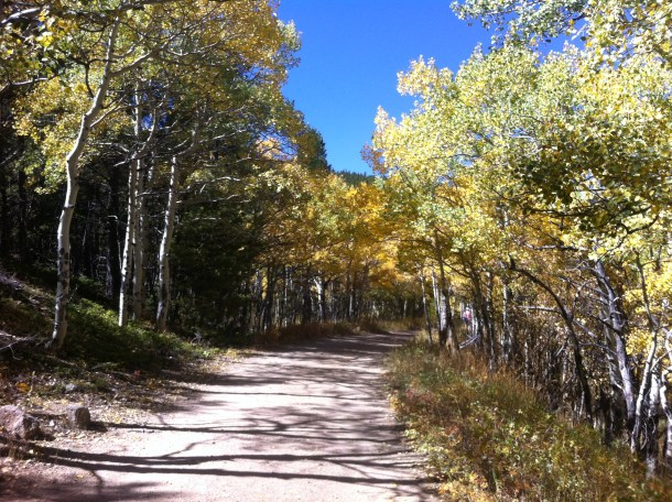 Caribou Ranch Open Space in Nederland Colorado in fall. Take your trail treats fall granola on a hike to a beautiful location after you use this recipe