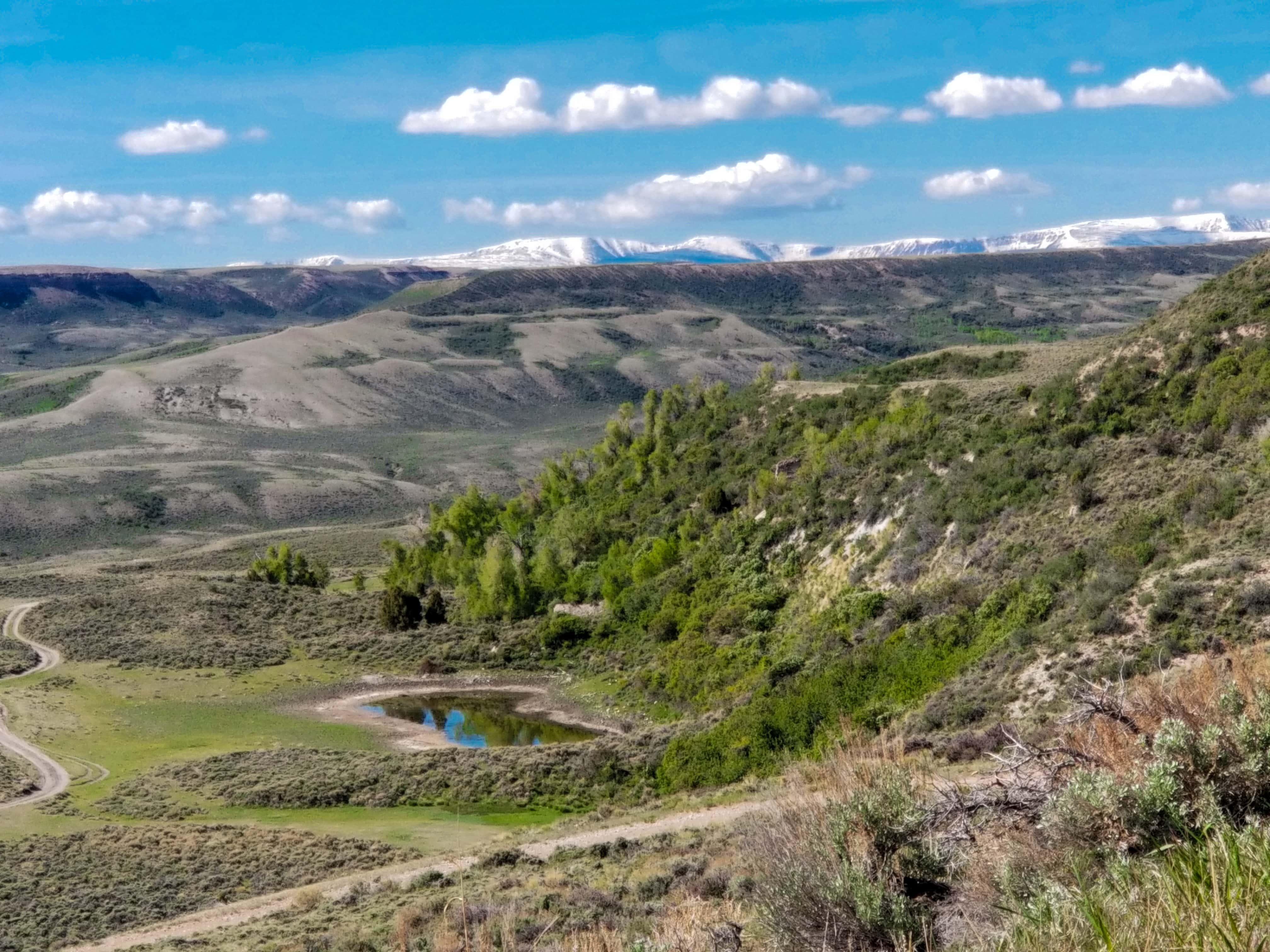 Cedar Mountain northeast area