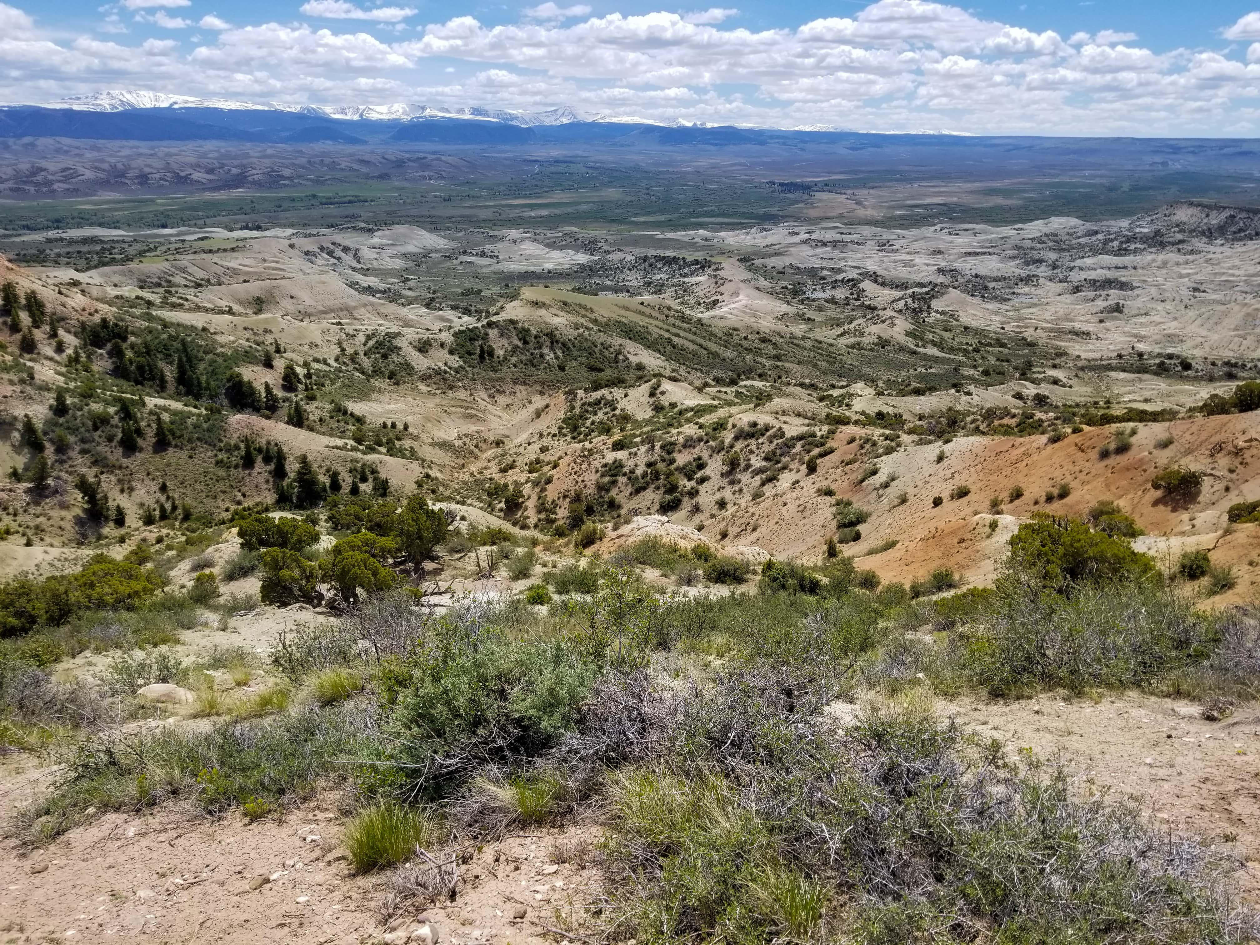 Cedar Mountain southwest flank