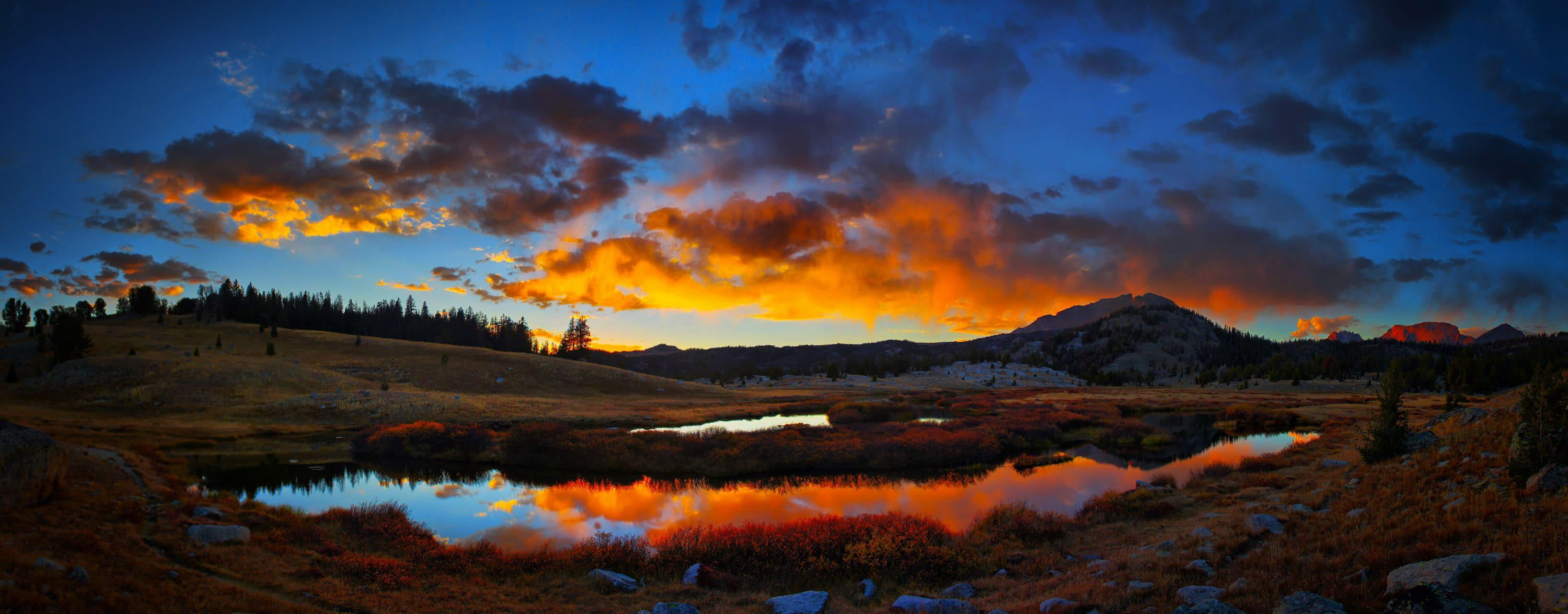 sunset reflections over meadow east of Mount Geikie