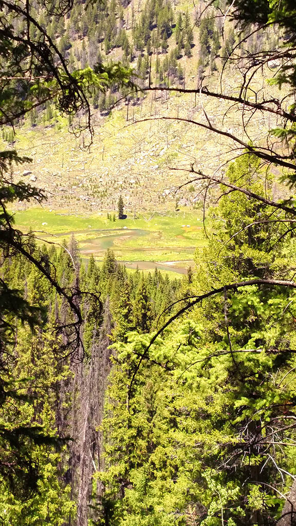Clear Creek, Wyoming meadows from Slide Lake Trail