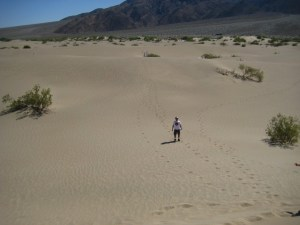 Geocaching in the desert