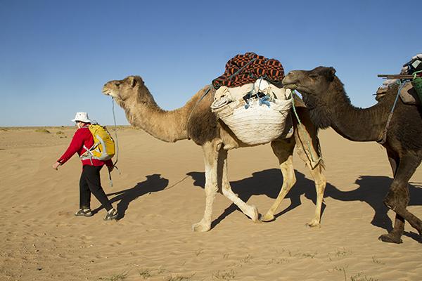 Helen trekking across the Sahara