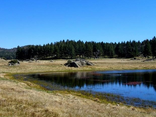 Big Laguna Trail