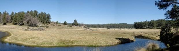 Big Laguna Trail at Laguna Mountain Recreation Area