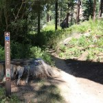 Pine Knot Trail