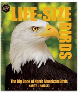 The Big Book of North American Birds Cover