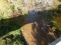 First look down at muddy Johnson Creek
