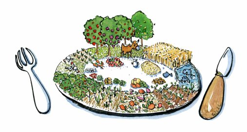 local-eating-farm-food-plate-illustration-by-frits-ahlefeldt