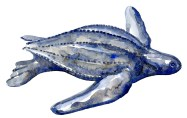 Leatherback turtle in Watercolor