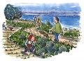 Drawing of a dyke climate coastal climate trail