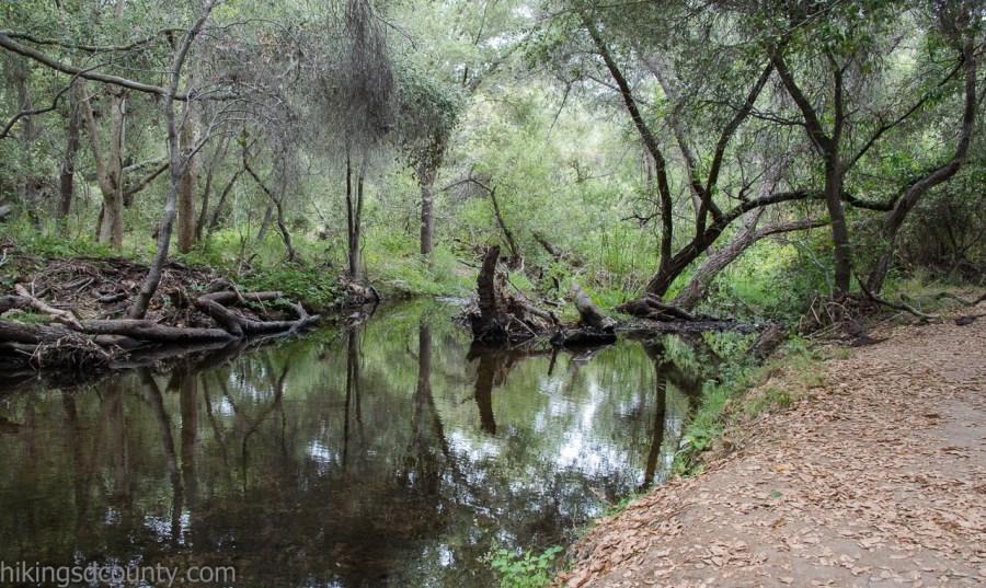 Creek at Rancho Penasquitos