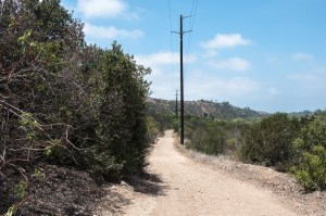 The trail at Otay Valley Regional Park