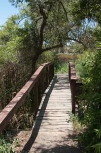 20140601Guajome Park Trail0026