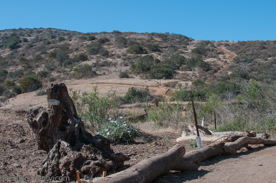 There are numerous areas being restored at the San Diego National Wildlife Refuge