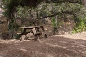A peaceful picnic spot along the shore of Felicita Creek, on the way to Bernardo Mountain