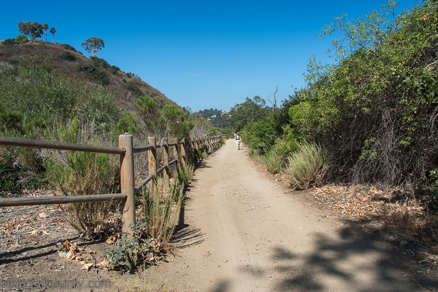 The Rose Canyon trail in San Diego