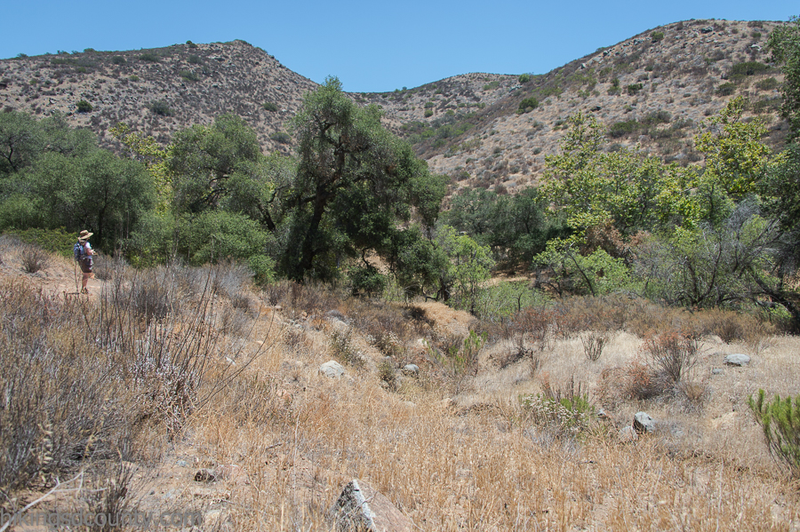 The Hollenbeck Canyon trail