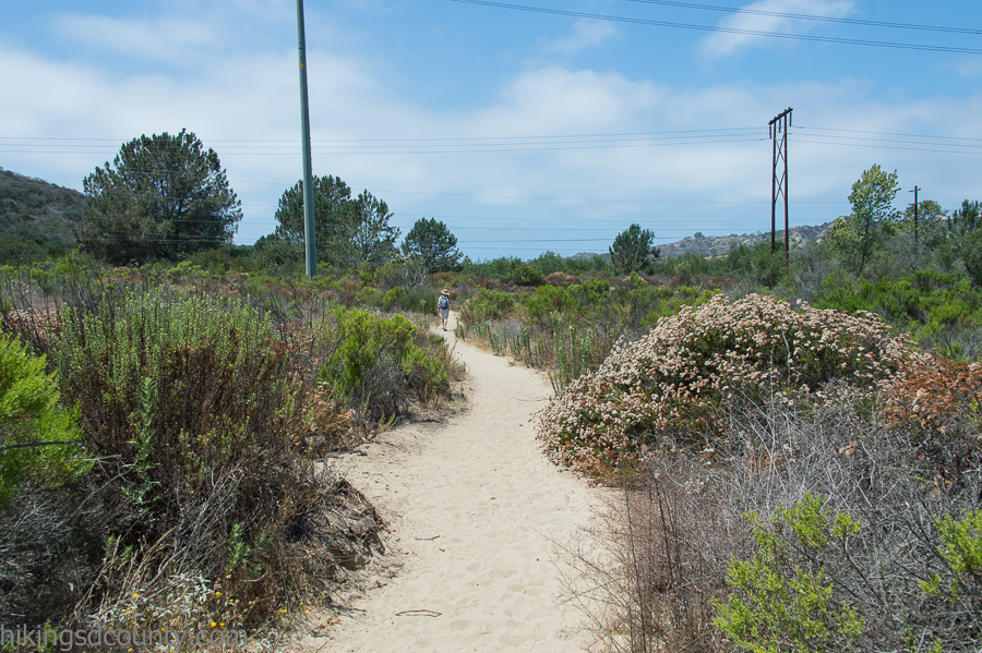 Intersection of La Orilla trail and Santa Helena trail at San Elijo Lagoon