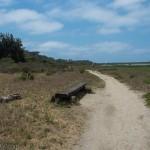 The Gemma Parks Interpretive Loop at San Elijo Lagoon